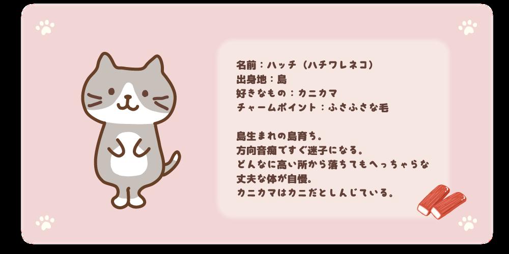 ハッチ紹介
